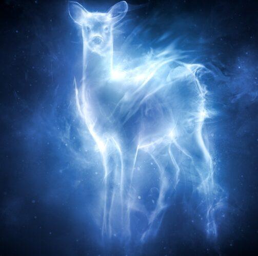 Spiritual Animal Ascension Reiki