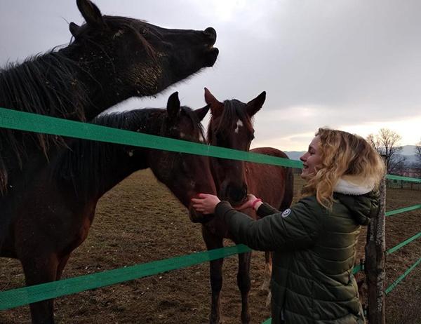 Consulti di Animal Communication