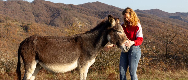 Corso Interattivo di Animal Communication
